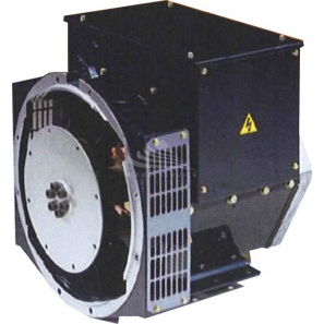 DINGOL DG164C Three Phase 13.5 kVA Brushless Alternator AVR