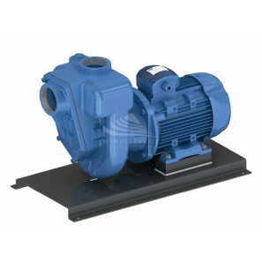 Self-priming monoblock pump for dirty water and not abrasive