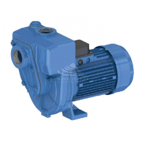 GMP - G2TMK-A 2.2KW Three phase (Open Impeller)