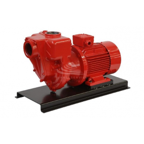 GMP - B4ZPM-A 30kW for Diesel Fuel Three Phase (Standards ATEX)