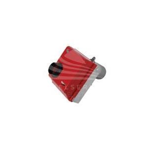 BM2 NATURAL GAS RIELLO BURNER + GAS TRAIN FOR JUMBO 235 NATURAL GAS