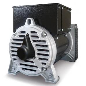 SINCRO FTR2 LC Three Phase Synchronous AC Alternator 24 kVA D-AVR