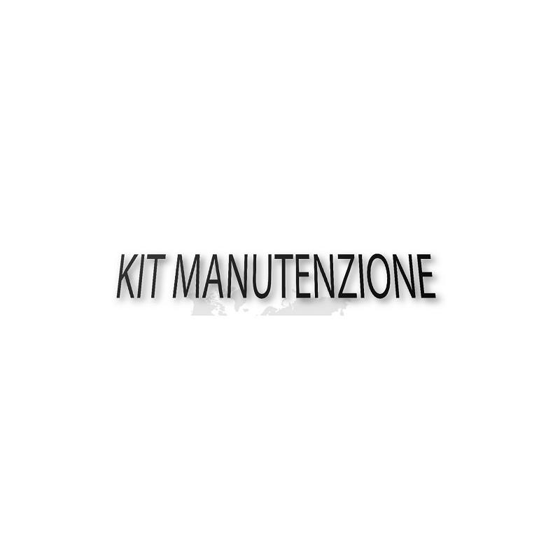 KIT MANUTENZIONE P3KI00004 PER MOTORI HONDA GX160H1-VPM6, HONDA GX200RT2-VPM4