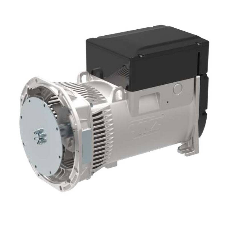LINZ E1S13M E/4 Three-phase alternator 4 poles 19 kVA 60 Hz Compound