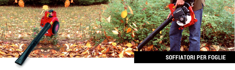 soffiatori_per_foglie